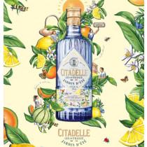 Citadelle-Jardin-d'éte-sommer-gin-mixmeister.dk