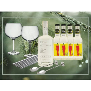 Adventsgave til en der elsker gin