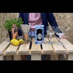 Hendrick's gin i gaveæske med 2 cocktailglas