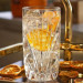 Nachtmann-palais-krystalglas-longdrinks-hihgball-hverdagsglas-cocktailglas-drinksglas-vandglas-thecocktailblog-Gin-Acetic-Cava